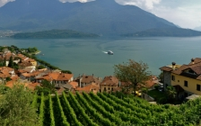 a wine tour by the lake7